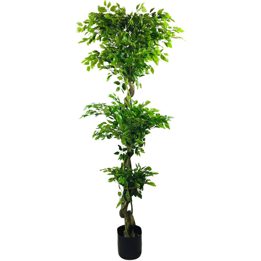 Artificial Ficus Leaf Topiary With Mini Leaves 175cm - Simply Utopia
