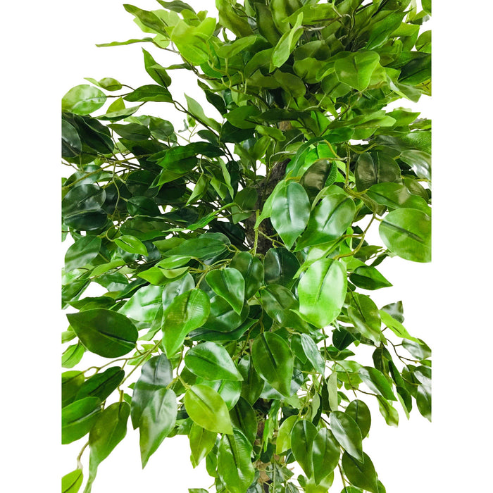 Artificial Ficus Tree With Twisted Trunk 145cm - Simply Utopia