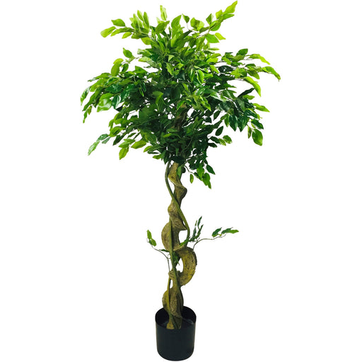 Artificial Ficus Tree With Twisted Trunk 137cm - Simply Utopia