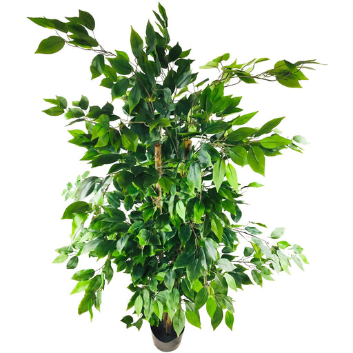 Artificial Ficus Tree With Pot 200cm - Simply Utopia