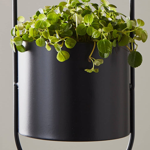 Large Black Hanging Plant Holder - Simply Utopia