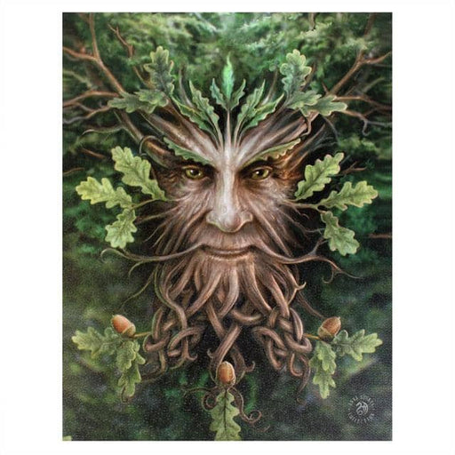 19x25cm Oak King Canvas Plaque by Anne Stokes - Simply Utopia