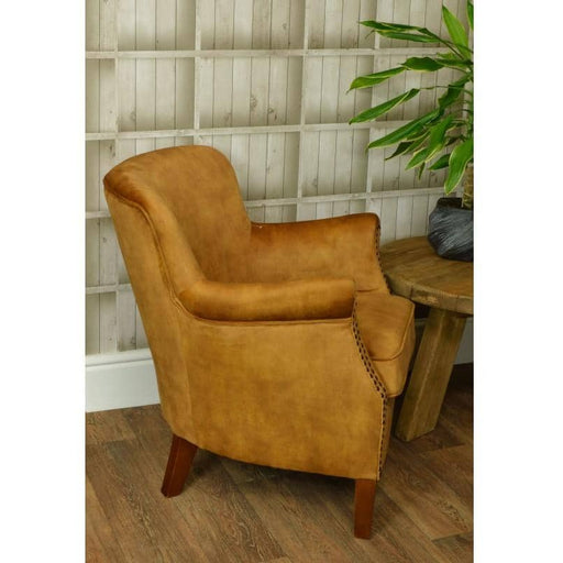 Cromarty Rubberwood Soft Gold Velvet Armchair - Simply Utopia