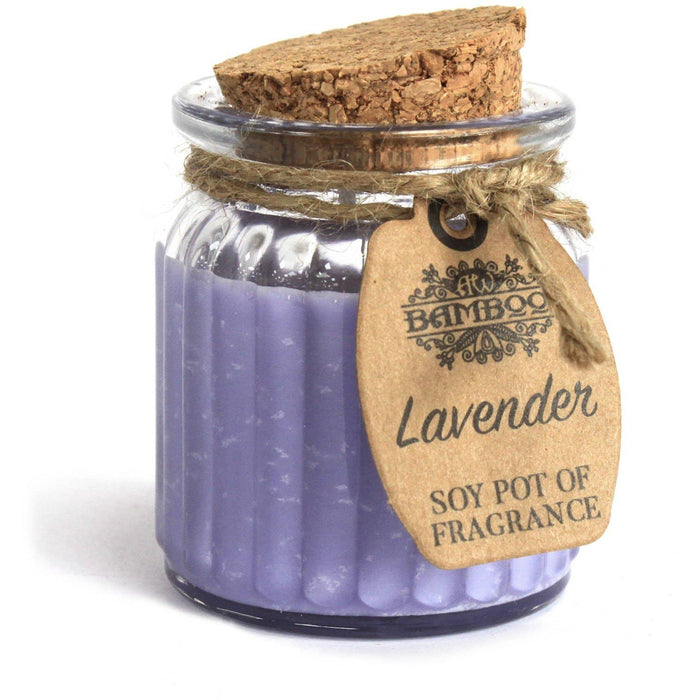 Lavender Soy Pot of Fragrance Candles - Simply Utopia