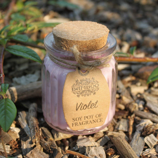 Violet Soy Pot of Fragrance Candles - Simply Utopia