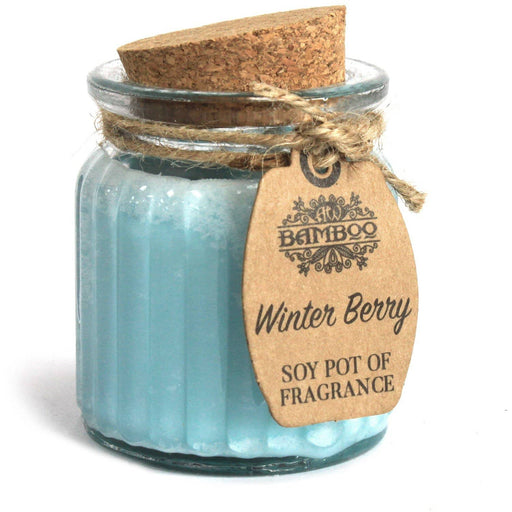 Winter Berry Soy Pot of Fragrance Candles - Simply Utopia