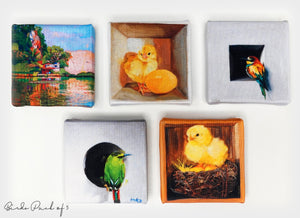 Handmade Fridge Magnets by Haze Long - Haze Long Fine Art & Resources Store