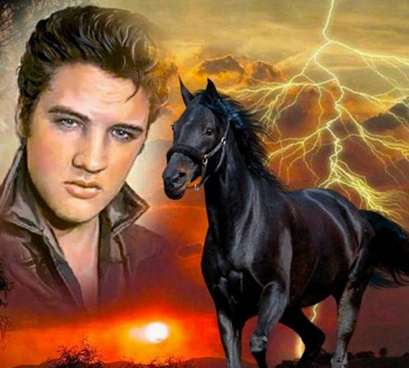 5D Diy Diamond Embroidery Full square\round Diamond Painting Elvis and horse