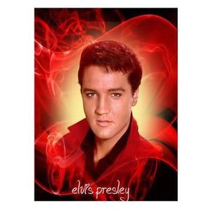 Wall Art - Printed Canvas Decoration - single panel frame option -Elvis -10