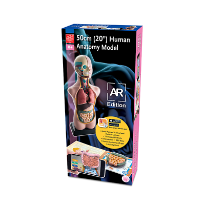 "Elenco EDU41007AR 20"" Human Anatomy Model AR Version"
