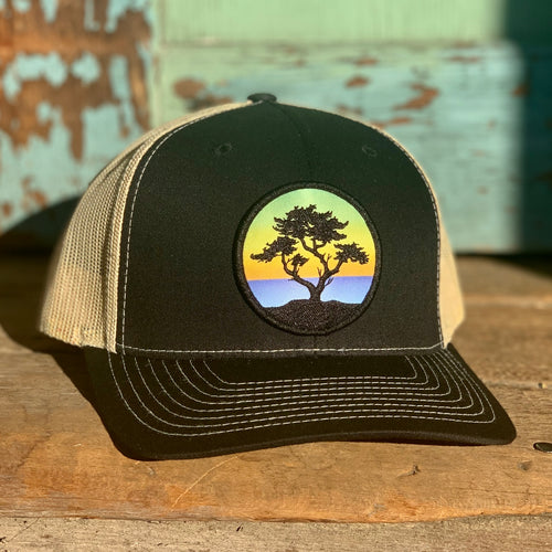 Curved-Brim Trucker (Black/Gold) with Cypress Patch