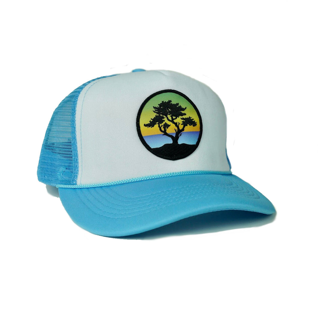 Foam-Front Trucker (Sky/White) with Cypress Patch