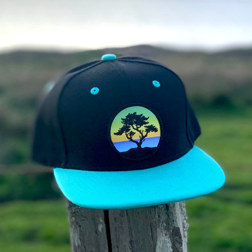 Flat-Brim Snapback (Black/Teal) with Cypress Patch