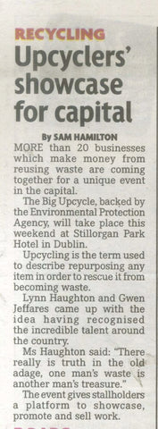 upcyclers showcase for capitol Irish Daily Mirror