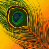 buy peacock feather painting online