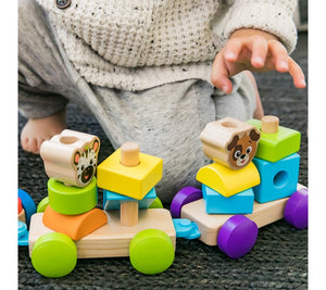 Baby Einstein BE11715 (30/45) Hape Discovery Train