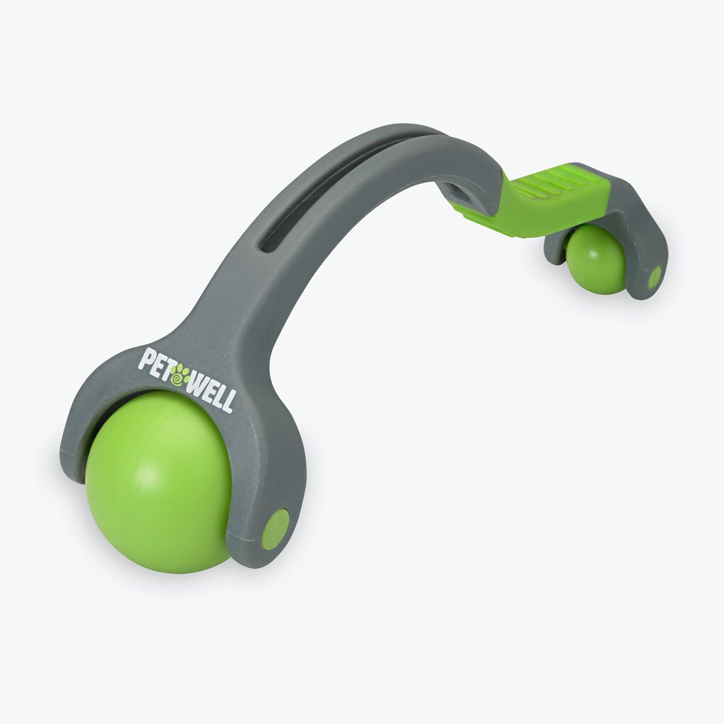 dual point massager for pet