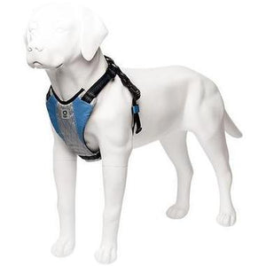 stunt puppy go dog glo harness blue