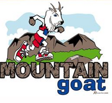 Load image into Gallery viewer, runolution mountain goat performance running hat logo detail