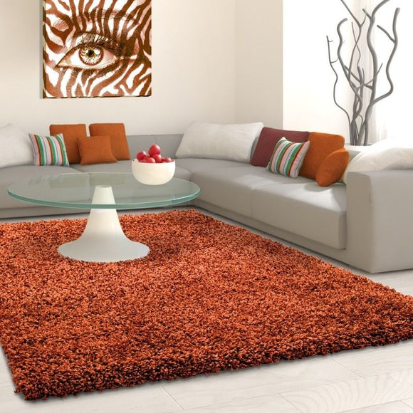 Deep Pile Shaggy Rug Modern Terracotta Fluffy Mat Small Large Plain Room Carpets