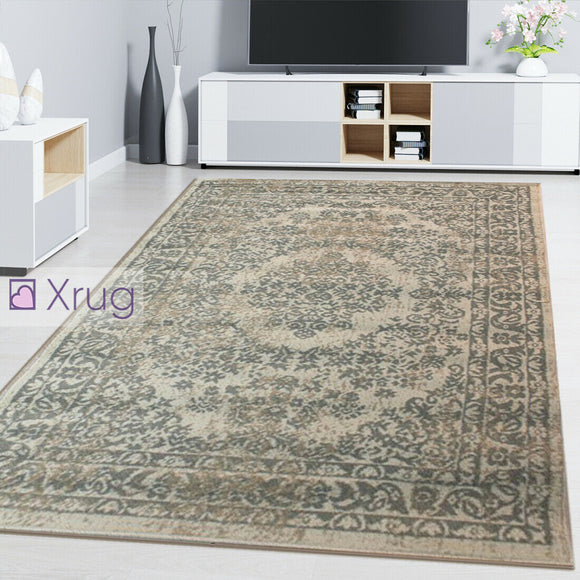 Oriental Rug Carpet Traditional Beige Floral Pattern Living Room Bedroom Mat New