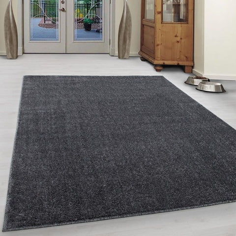 Plain Grey Rug Bedroom Living Room Rugs Mats Small Large XL Carpet Mat New