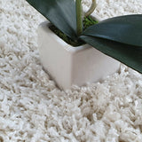 Shaggy Rugs White Cream Soft Fluffy Rug Long Pile Living Room Bedroom Carpet Mat