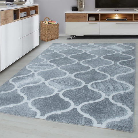 Light Grey Rug Modern Oriental Pattern Carpet Small Large Short Pile Bedroom Mat