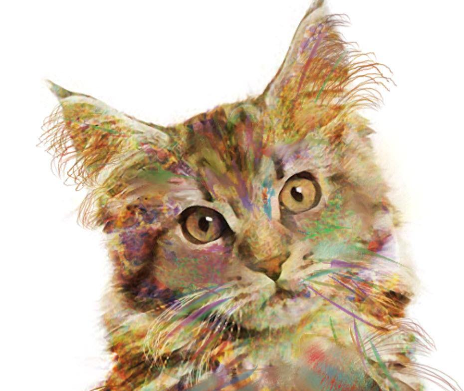 Best Cat Painting Brushes & Tutorials 2019