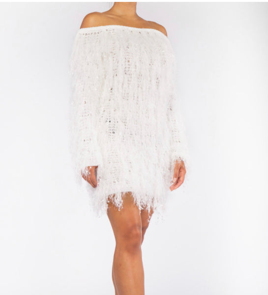 Coco Fuzzy Sweater Dress