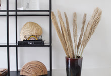 Afbeelding in Gallery-weergave laden, Cane Arundo naturel