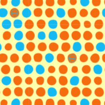 Go Dotty- Orange - Medium