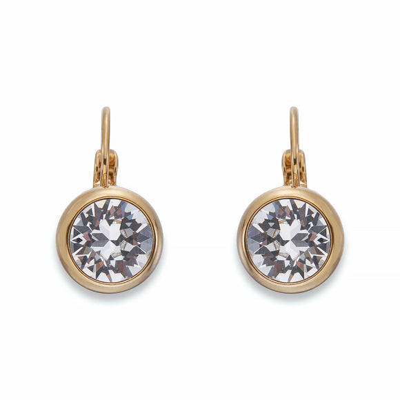 White Crystals on Gold Earrings
