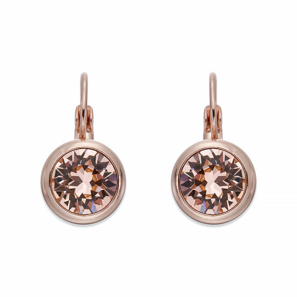 Golden Crystals On Rose Gold Earrings | ${Vendor}