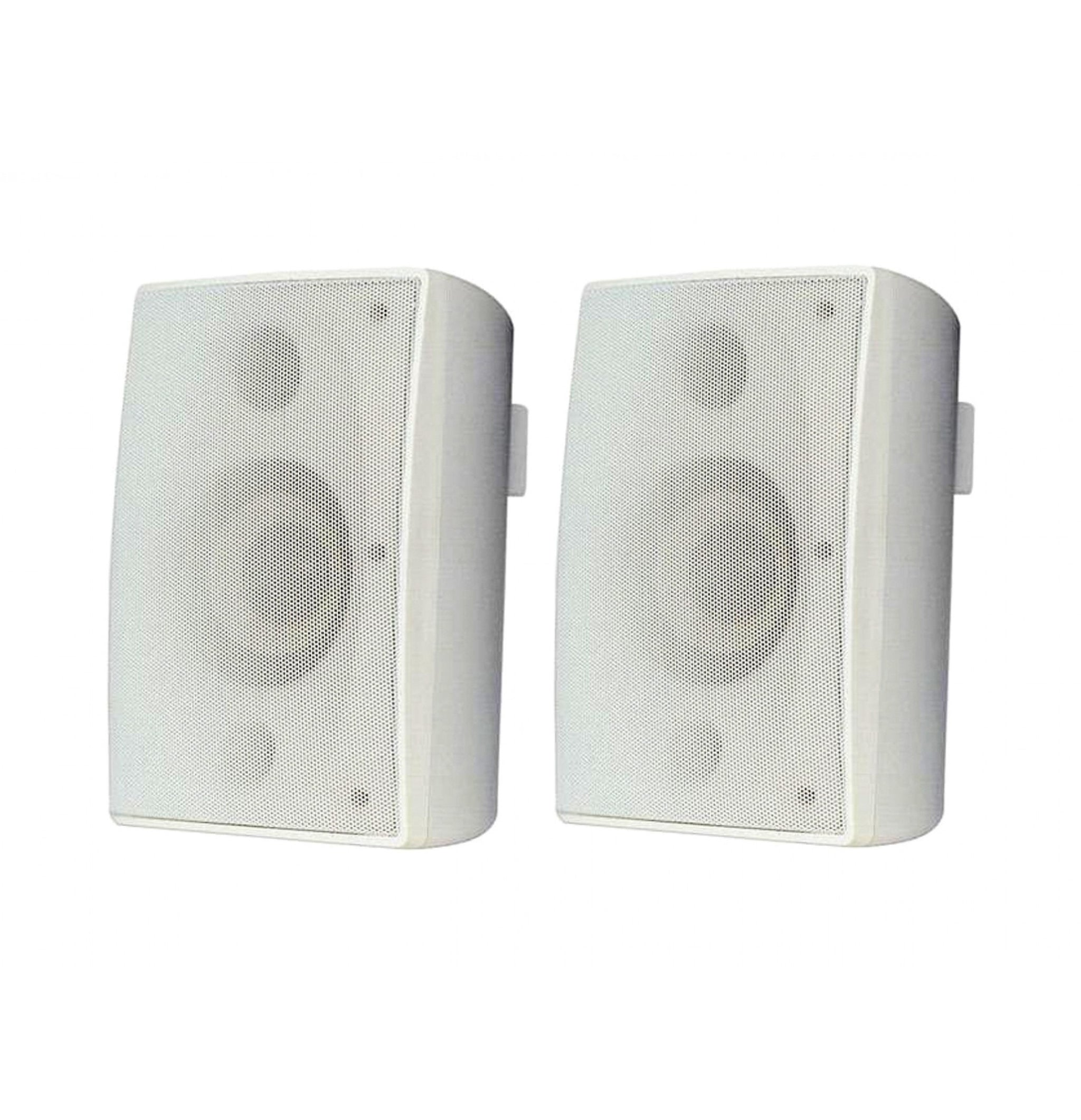 PI-NP100 Outdoor Speakers