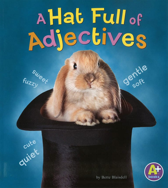 A Hat Full of Adjectives </br> Item: 550978
