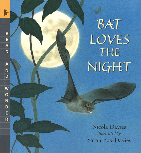Bat Loves the Night </br> Item: 624385