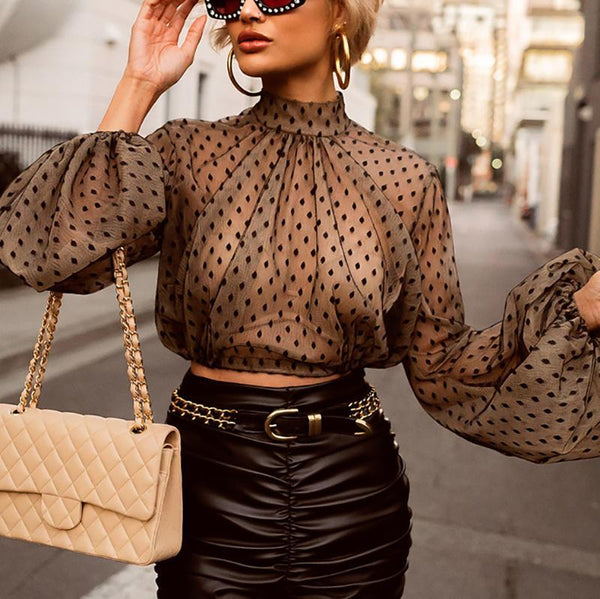 Sexy Polka Dot Mesh Long Sleeve Shirt