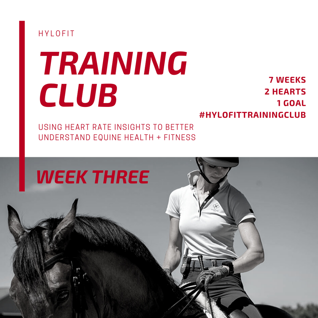 Hylofit Training Club Week 3: Slow and Steady