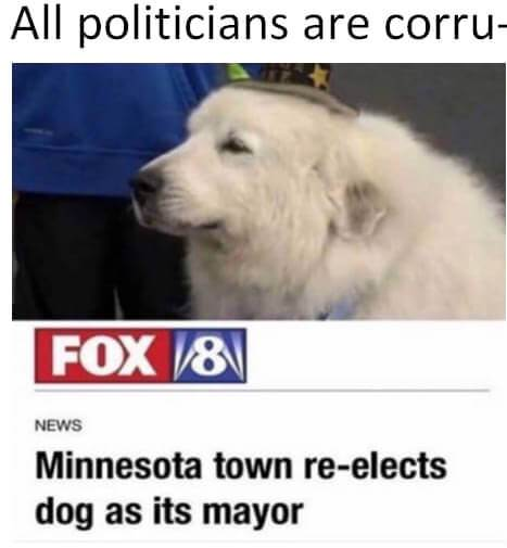 Politicians, yes, seriously! Not all politicians are corrupt. Some are dogs.