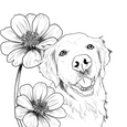 Dogs in Nature Coloring Book