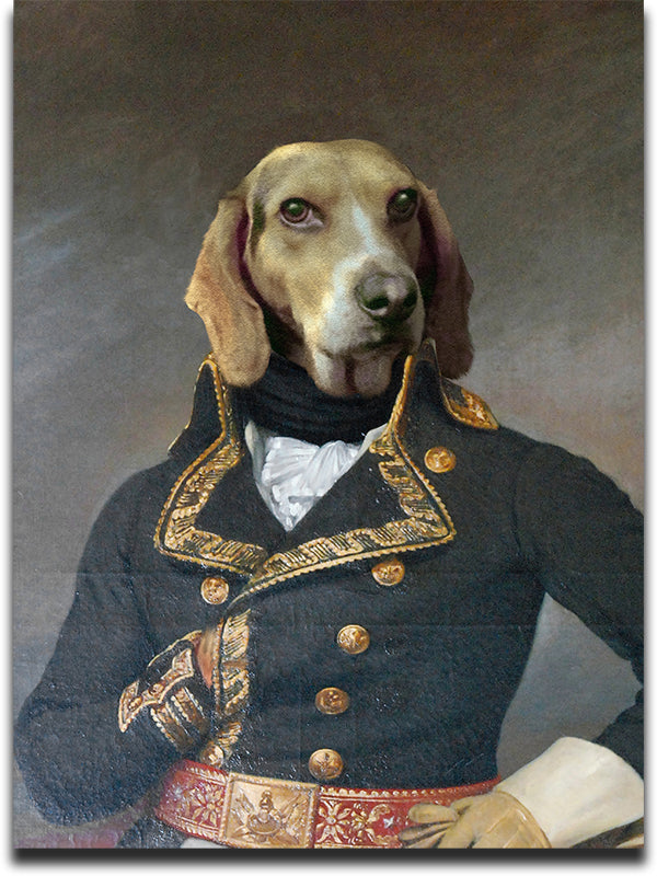 Custom Pet Portrait of a Hound dressed in an Admiral Costume