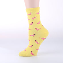 Womens Cute Dinosaur Socks - 5 pairs - Dinosaur Themed Gifts & Accessories