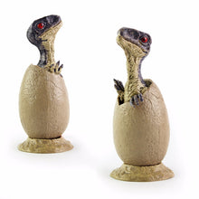 Dinosaur Baby Eggs Collectible Toys - Dinosaur Themed Gifts & Accessories