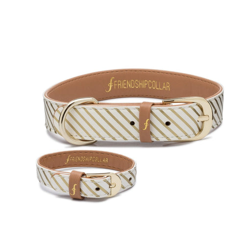 Friendship Collar - Devoted Doggy