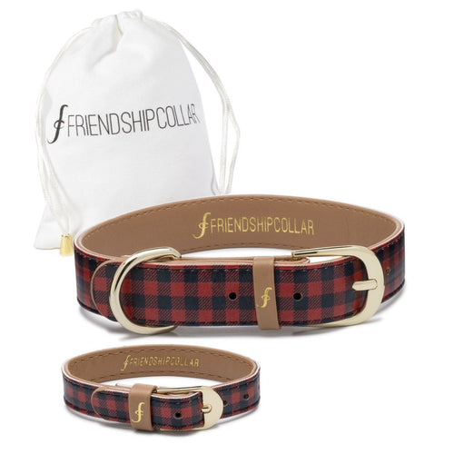 Friendship Collar - Hipster Pup