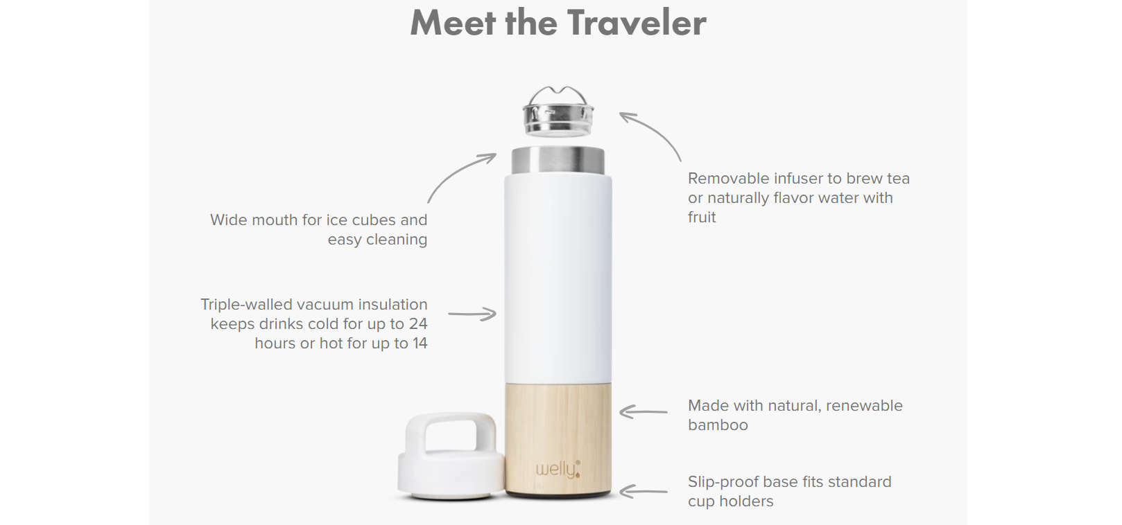 Traveler Bottle - Sage