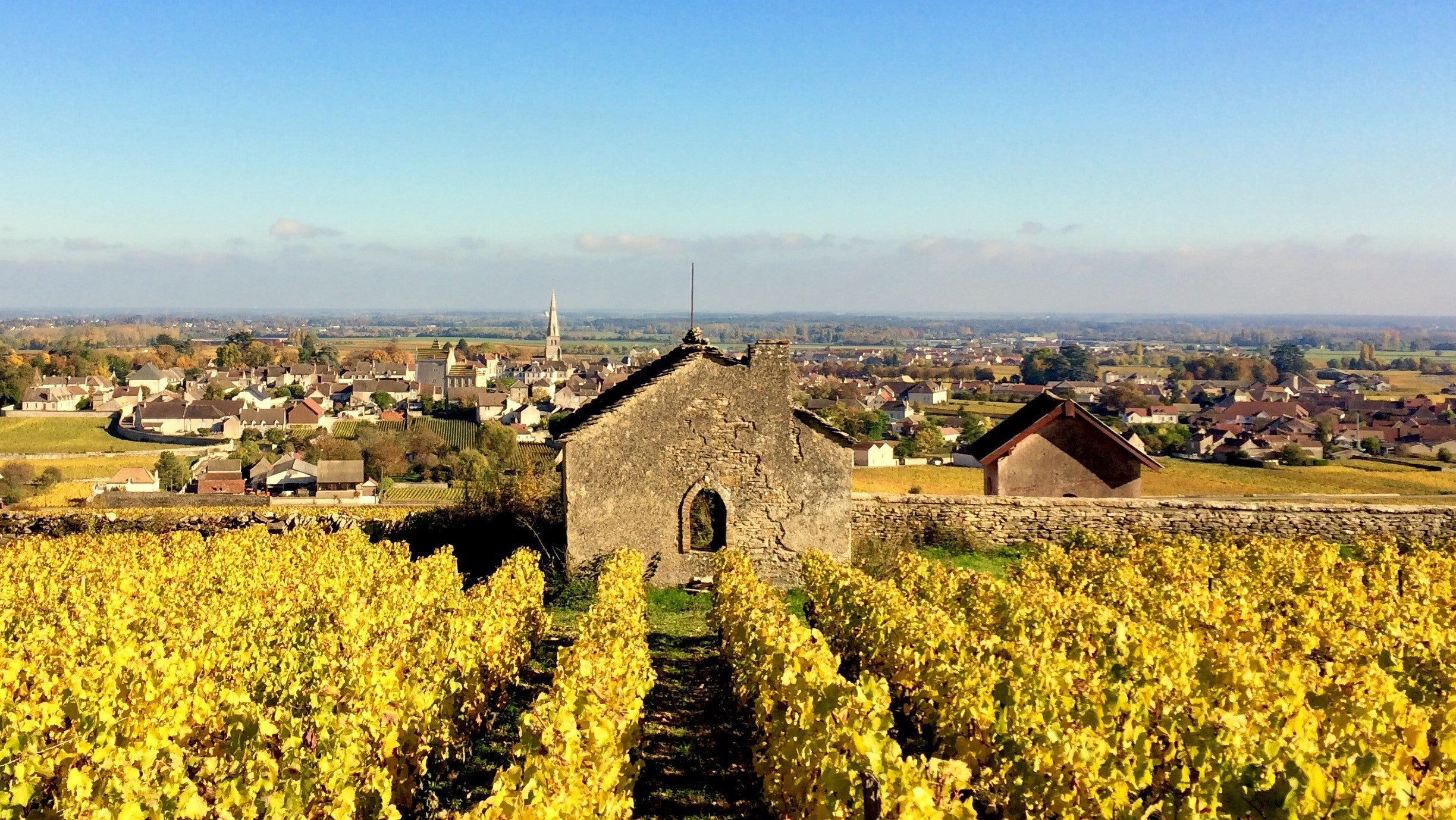 Domaine Rougeot overlooking the landscape of Meursault Burgundy France