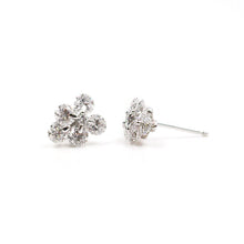 Load image into Gallery viewer, Diamond Clusters & White Gold Earrings