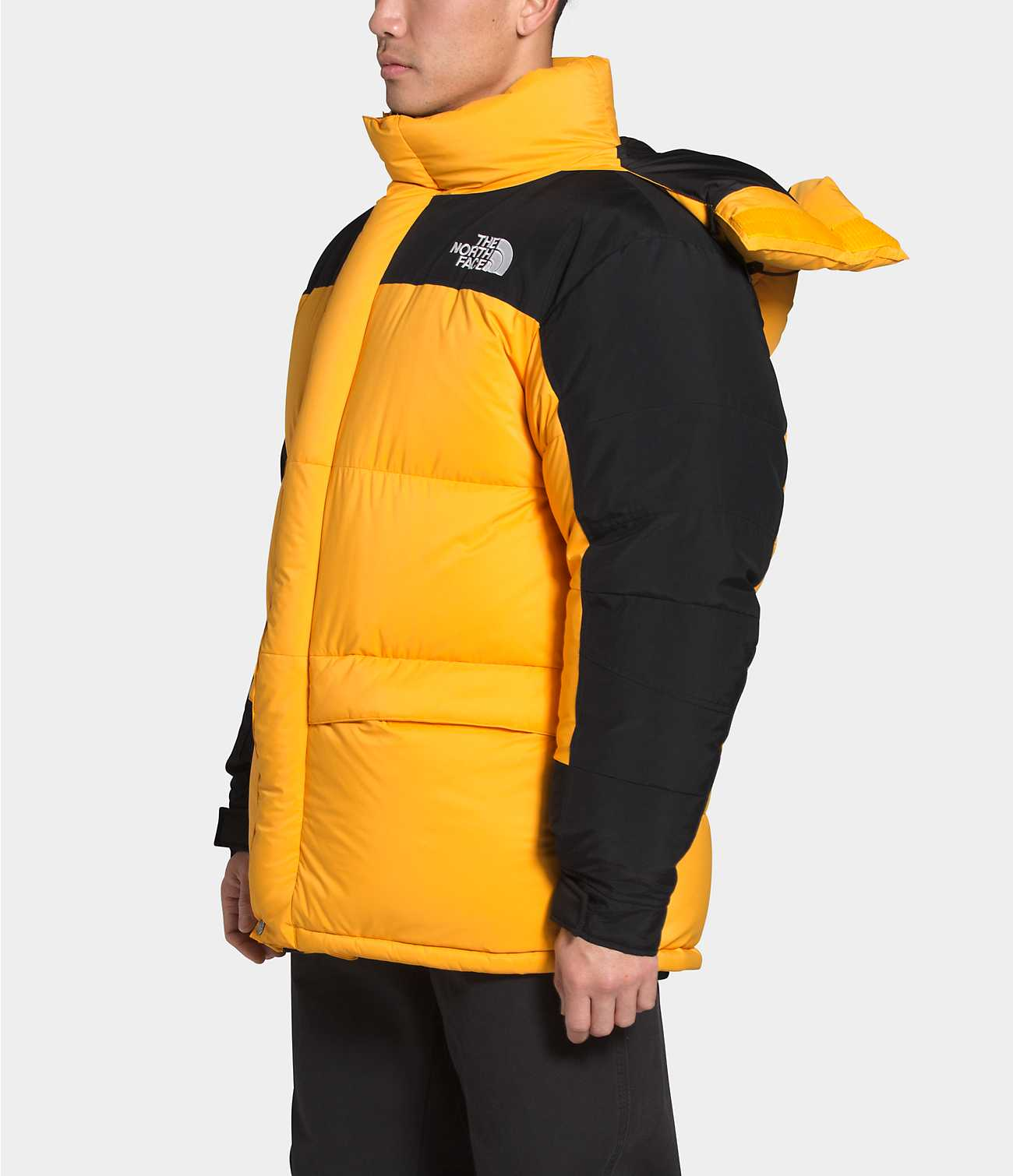 THE NORTH FACE M'S OUTDOOR JKT 1994 RETRO HIMALAYAN FUTURELIGHT PARKA